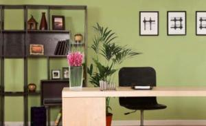 feng-shui_home-office_OM-Times